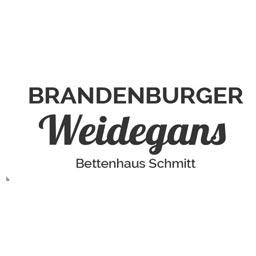 Logo Weidegans