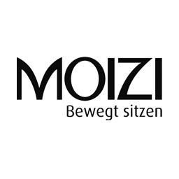 Logo Moizi
